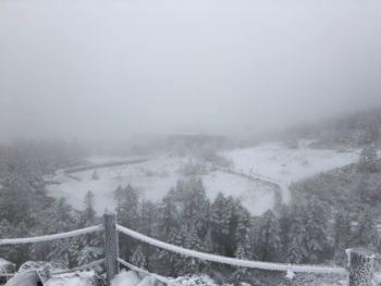 北八ヶ岳ロープウェイ