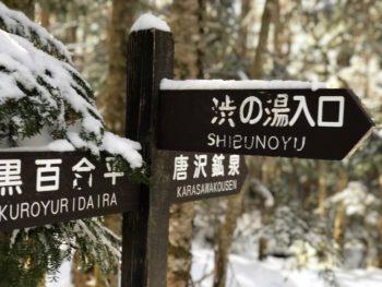唐沢鉱泉分岐